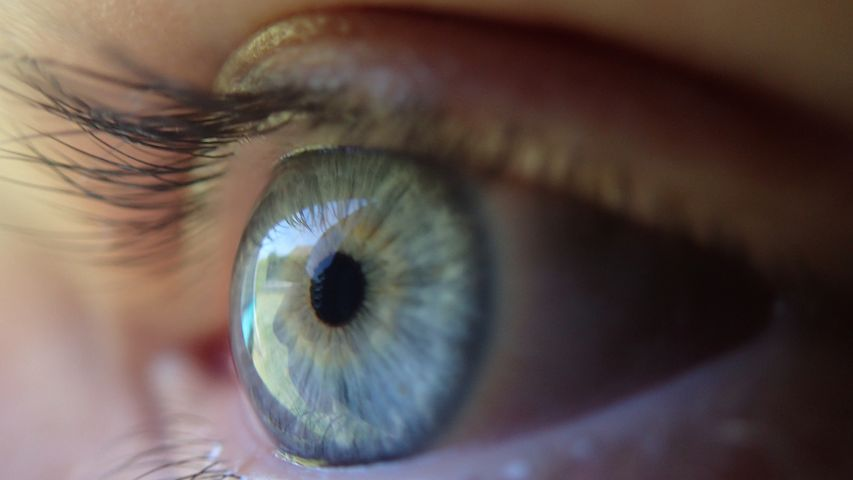 what-is-macular-degeneration-of-the-eye